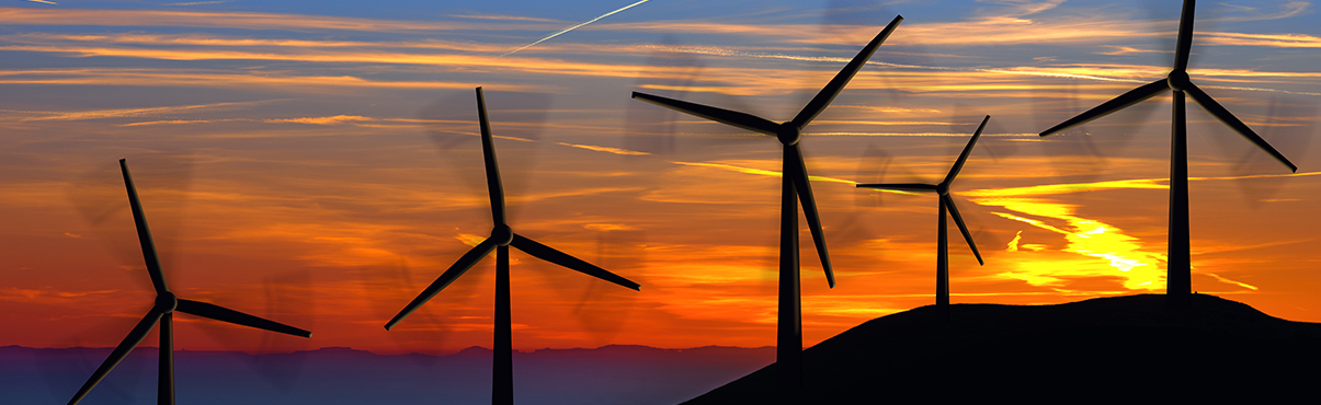 Wind turbines help fight the global climate crisis.