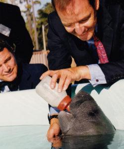 Ted Roosevelt feeds a manatee as Allison DeFoor looks on